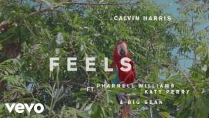 Calvin harris feels